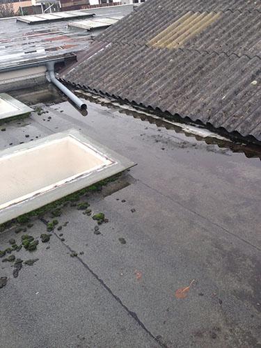 ZHG holz & Dach Sanierung Flachdach